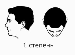 1 степень