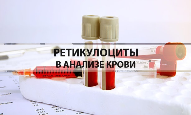 Ретикулоциты в анализе крови
