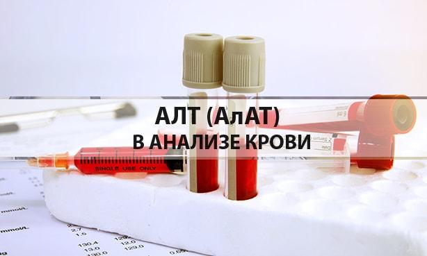 АЛТ в анализе крови