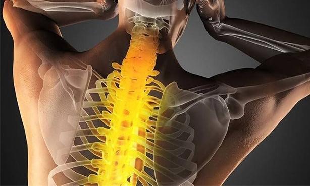 Боль в области спины и шеи