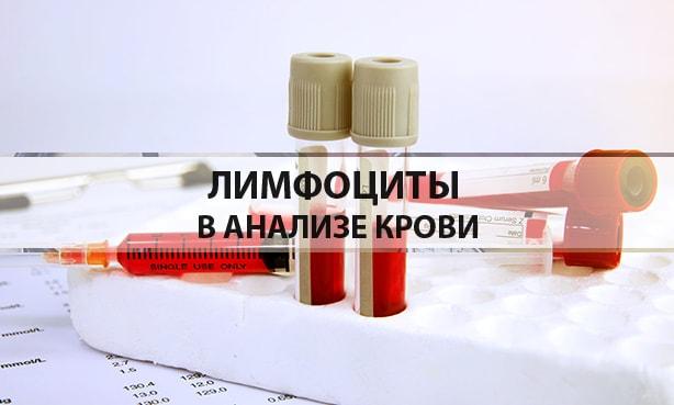 Лимфоциты в анализе крови