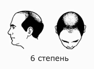 6 степень