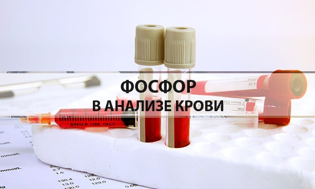 Фосфор в анализе крови