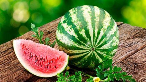 Арбуз – ягода, обладающая мочегонным эффектом, полезна при песке в почках
