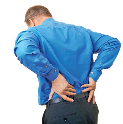Боль в районе почек сигнализирует о каких либо патологиях в органах мочевыделения или в позвоночнике
