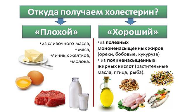 Продукты с плохим и хорошим холестерином