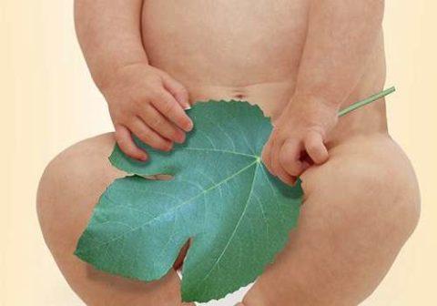 Хронический воспалительный процесс мочевого у детей
