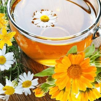 Календула и зверобой в лечебном рецепте, усиливают противовоспалительные и бактерицидные свойства ромашки.