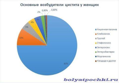 На диаграмме представлены основные возбудители цистита