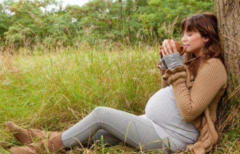 Не все травяные сборы можно пить при беременности, получите одобрение врача