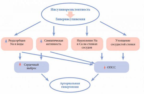 Механизм развития резистентности к инсулину
