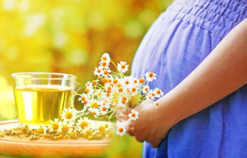 Перед применением любых лекарственных растений во время вынашивания малыша – надо проконсультироваться с врачом.