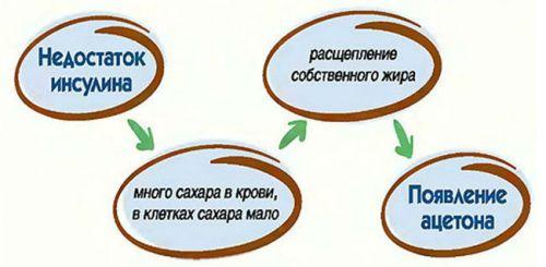 Механизм развития кетоацитоза