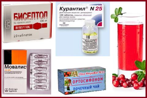 Стандартное лекарственное и фито-сопровождение антибиотикотерапии при пиелонефрите