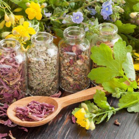 Травяной сбор для рецептов народной медицины