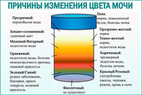 Внешний вид урины многое расскажет о состоянии здоровья человека.