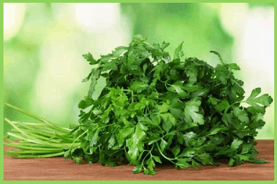 Зелень петрушки
